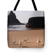Seagull's Folly Tote Bag