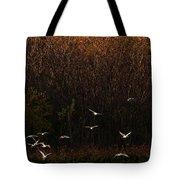 Seagulls In Flight Tote Bag