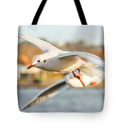 Seagulls In The Air Tote Bag