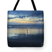Seagulls On Beach At Sunset Tote Bag