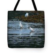 Seagulls-signed-#9360 Tote Bag