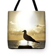Seagull's Sunrise Silhouette Tote Bag