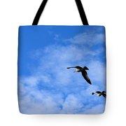 Seagulls2 Tote Bag