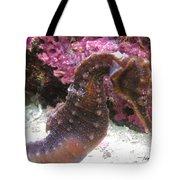 Seahorse4 Tote Bag