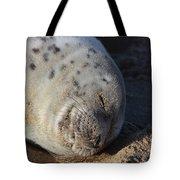 Seal Dream Tote Bag