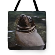 Seal In The Water Tote Bag