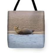 Seal Relaxing On Cupsogue Beach Tote Bag