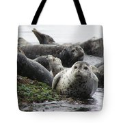 Seal Rock Tote Bag