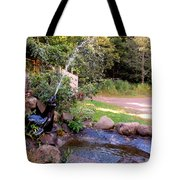 Seal Statue Fountain 1 Tote Bag