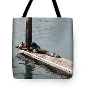 Seals At Oceanside Tote Bag