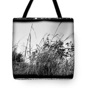Searching For Mr. Bob Tote Bag