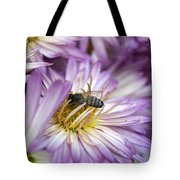 Searching Honey Tote Bag