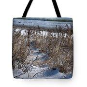 Seascape In Winter Tote Bag