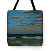 Seascape With Tearns Tote Bag