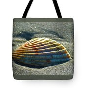 Seashell After The Wave Tote Bag