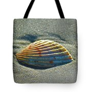 Seashell After The Wave Square Tote Bag