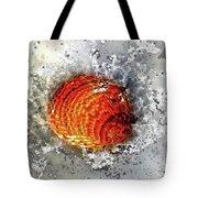Seashell Art - Square Format Tote Bag