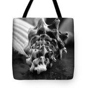 Seashell Bw  Tote Bag