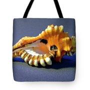 Seashell Cymatium Lotoium Tote Bag