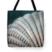 Seashell Designs Tote Bag