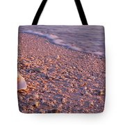 Seashell On The Beach, Lovers Key State Tote Bag