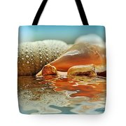 Seashell Reflections On Water Tote Bag