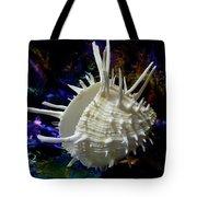 Seashell Spondylus Americanus Tote Bag