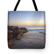 Seashells At The Seashore Tote Bag