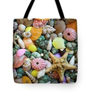 Seashells 3 Tote Bag