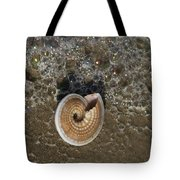 Seashells By The Sea Tote Bag