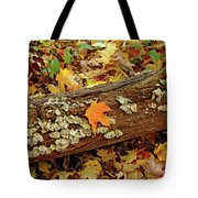 Seashells In The Forest Tote Bag