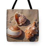 Seashells On The Sand Tote Bag
