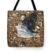 Seashells On The Seashore Tote Bag