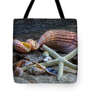Seashells And Driftwood Tote Bag