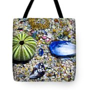 Seashore Colors Tote Bag