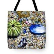 Seashore Colors Tote Bag