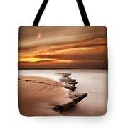 Seashore Wonders Tote Bag