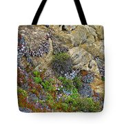 Seaside Cliff Garden In Point Lobos State Reserve Near Monterey-california  Tote Bag