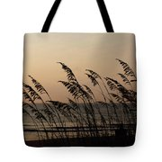 Seaside Guardians Tote Bag
