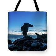 Seaside Rock Formations At Daybreak Tote Bag