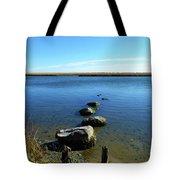 Seaside Rocks Tote Bag