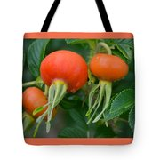 Season End Tote Bag