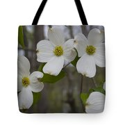 Season Of Dogwood Tote Bag