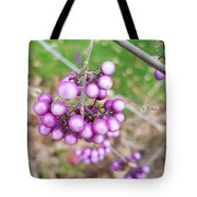 Seasonal Charm Tote Bag