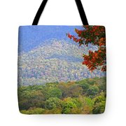 Seasonal Color Tote Bag