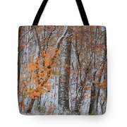 Seasons Overlapping Tote Bag