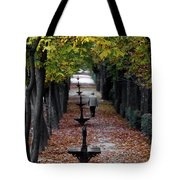 Seasons - Pathway Tote Bag