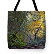 Romantic Autumn Rendezvous Tote Bag
