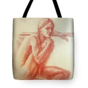 Seated At The Barre Tote Bag