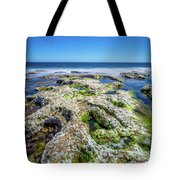 Seaweed And Salt. Tote Bag by Gary Gillette